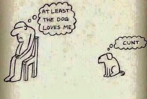 cunt dog