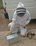 The bee keepers suit. Note the gloves! The tin box to the left contains fuel for the smoker the smoker with its bellow is on the right